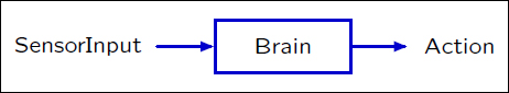Diagram of sensor input, brain, and action.