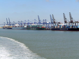 Row of container ships in dock with cranes overhead.